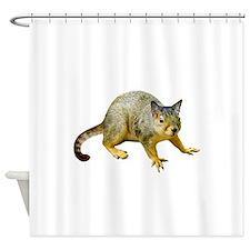 Cat Squirrel Shower Curtain