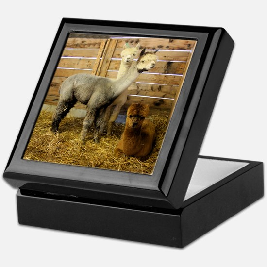 Alpaca's Keepsake Box