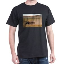 Bulls Clash in Wind Cave National Park T-Shirt