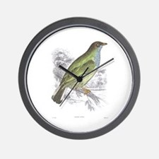 Honey Guide Bird Wall Clock