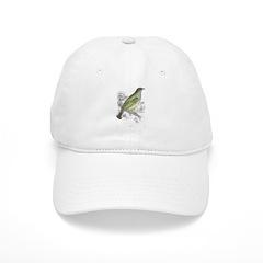 Honey Guide Bird Baseball Cap