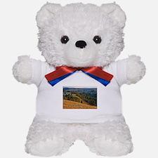 Wind Cave Elk Valley Teddy Bear