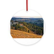 Wind Cave Elk Valley Ornament (Round)
