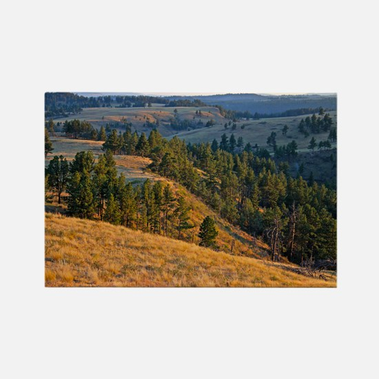 Wind Cave Elk Valley Rectangle Magnet