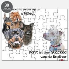 Save the Pitbull Puzzle