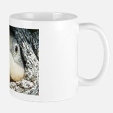 Diamondback Terrapin turtle Mug