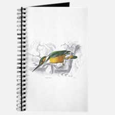 Kingfisher Bird Journal