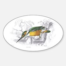 Kingfisher Bird Oval Decal