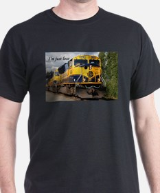 I'm just loco: Alaska Railroad T-Shirt