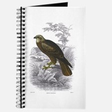 Marsh Harrier Bird Journal