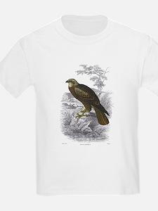 Marsh Harrier Bird (Front) Kids T-Shirt