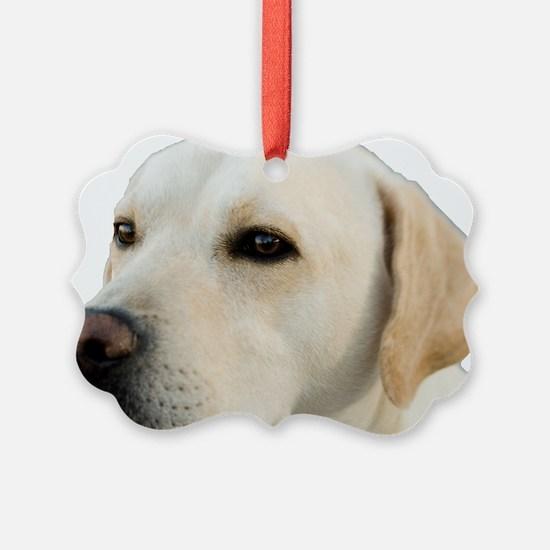 Yellow Lab Head Ornament