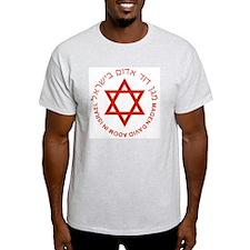 Magen David Adom Ash Grey T-Shirt