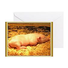 Cute sleeping baby piglet Greeting Card