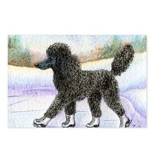 Black poodle takes to the ice Postcards (Package o