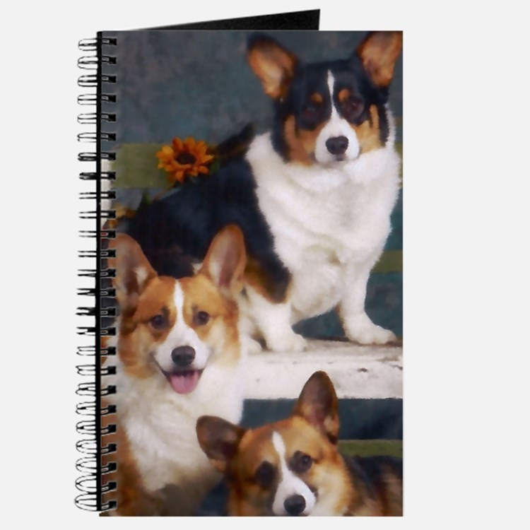 Corgi(2) Journal