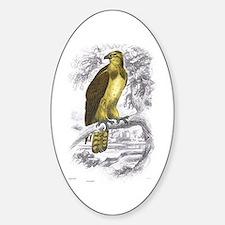 Osprey Bird Oval Decal
