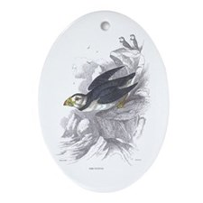 Puffin Bird Oval Ornament