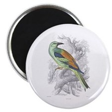 "Roller Bird 2.25"" Magnet (10 pack)"