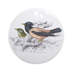 Rose Coloured Pastor Bird Ornament (Round)