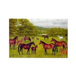 MARES & FOALS Rectangle Magnet (100 pack)