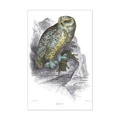 Snowy Owl Bird Posters