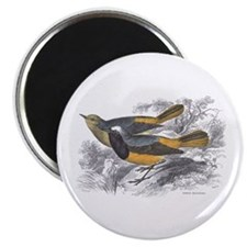 Tithy's Redstart Bird Magnet