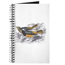 Tithy's Redstart Bird Journal