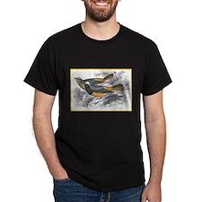 Tithy's Redstart Bird (Front) Black T-Shirt