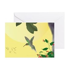 Hummingbird Thank You Cards (Pk of 10)