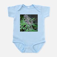 Organic Purple Bud Infant Bodysuit