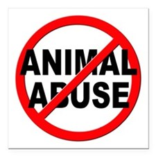 "Anti / No Animal Abuse Square Car Magnet 3"" x 3"""