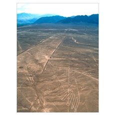 Nazca lines Poster