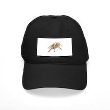 Tarantula Baseball Hat