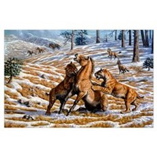 Scimitar cats attacking a horse Poster