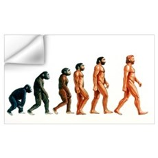 Stages in human evolution Wall Decal