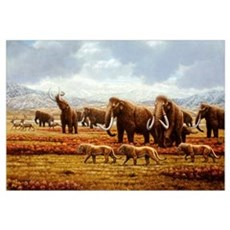 Woolly mammoths Poster