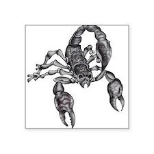 scorpion-tattoo-215253_0668-nc.jpg Square Sticker