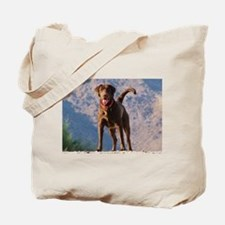Lovable Chocolate Lab Tote Bag