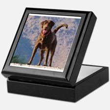 Lovable Chocolate Lab Keepsake Box
