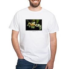 dragonseahorse2 T-Shirt