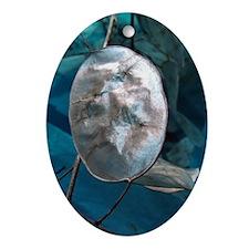 Money Plant (Honesty) Oval Ornament