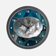 Money Plant (Honesty) Wall Clock