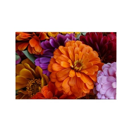 Southhampton Zinnias Rectangle Magnet (10 pack)