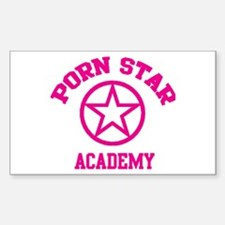 Porn Star Academy Rectangle Stickers