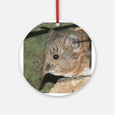 A Little Nosy Ornament (Round)