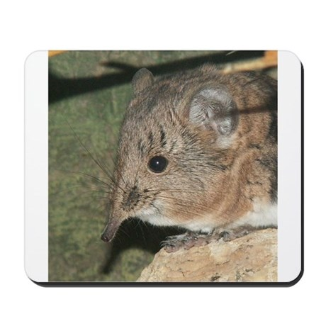 A Little Nosy Mousepad