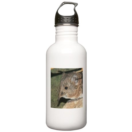 A Little Nosy Stainless Water Bottle 1.0L