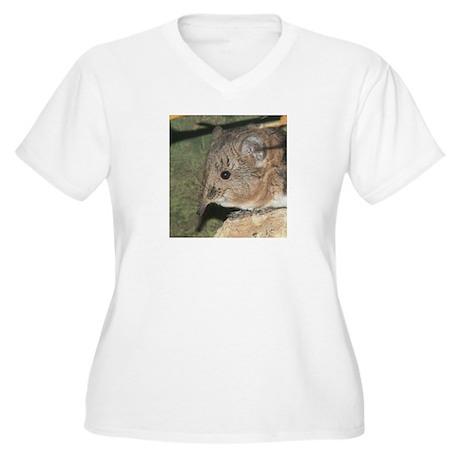 A Little Nosy Women's Plus Size V-Neck T-Shirt