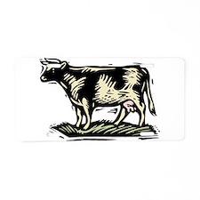 j0149627.wmf Aluminum License Plate